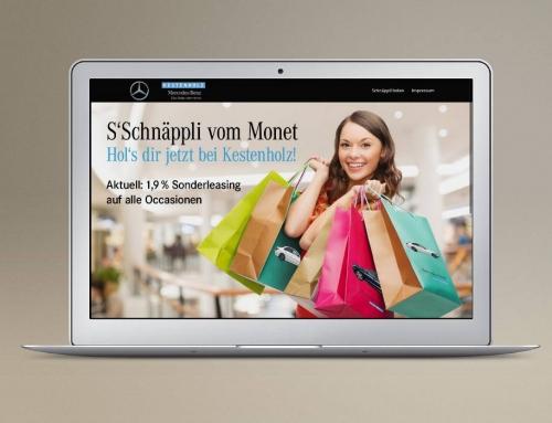 Mercedes-Benz Kestenholz Schweiz | Leadpage